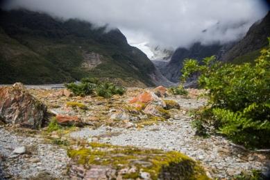 Franz Josef Glacier © Katharina Sunk