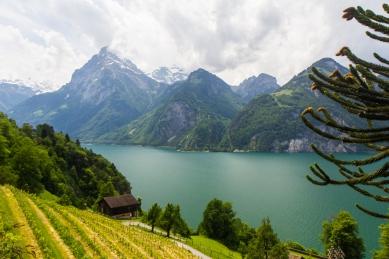 Schweiz © Katharina Sunk