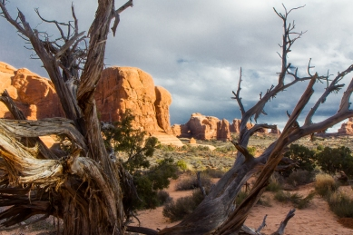Arches Nationalpark © Katharina Sunk