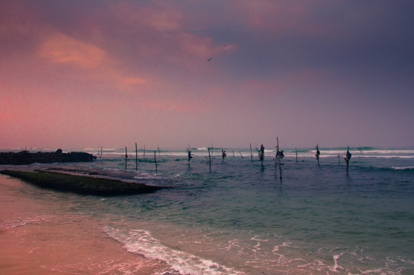 Stilt fishermen in Ahangama © Katharina Sunk