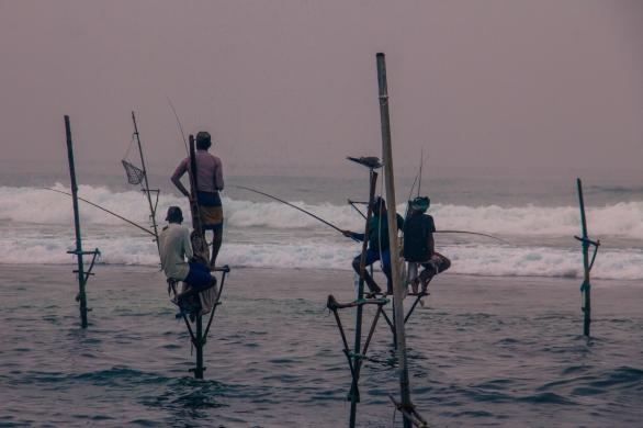 Stilt fishermen in Ahangama © Katharina Sunk